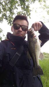 Largemouth Bass — Valentin Andreau