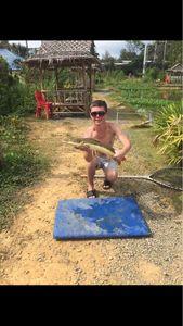 Poisson-Chat à Queue Rouge — Titouan Dorveaux