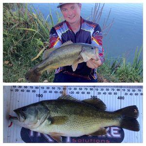 Largemouth Bass — Guillaume Nunez