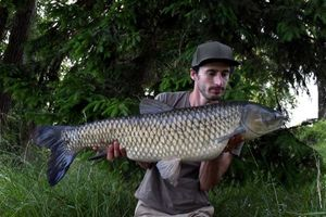 Grass Carp — Brooks CarpFishing