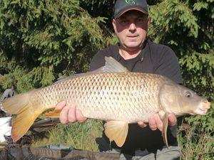 Common Carp — Bertrand Thibaud