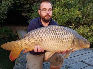 Common Carp — Benjamin  Pineau