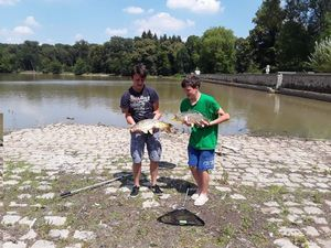 Mirror Carp — Maxence Bouchardon