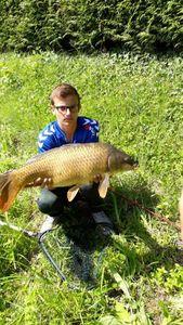 Common Carp — Alexandre Ruch