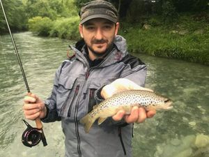 Brown Trout — Fabrice Fumat