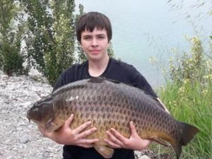 Common Carp — Joan David