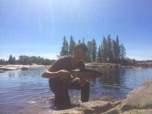 Ouananiche Salmon — Thibault Fonteneau