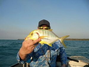 Golden Trevally — Sebastien Pelletier