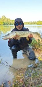 Northern Pike — Tony Sam