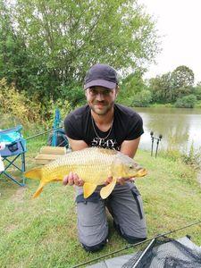 Common Carp — Steven Regnier