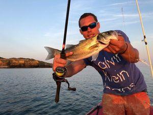 European Bass (Seabass) — barloup fishing