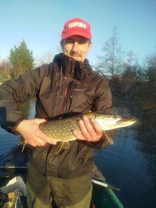 Northern Pike — David Decuyper