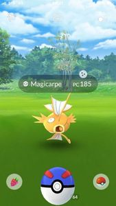 Magicarpe shiny