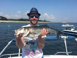 European Bass — Thomas Saffray