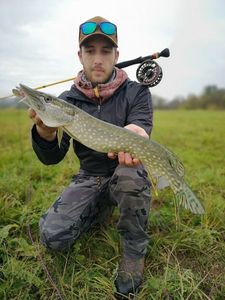 Northern Pike — Nicolas flyfishing