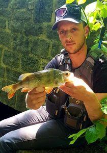 European Perch — Nicola Fisherman