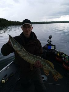 Northern Pike — Cédric Fishing