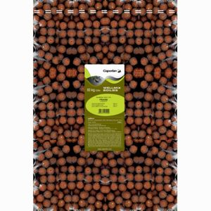 Baits & Additives Caperlan BOUILLETTES WELLMIX 10KG STRAWBERRY
