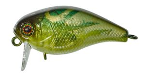 Lures Illex CHUBBY 38 SSR COCKROACH