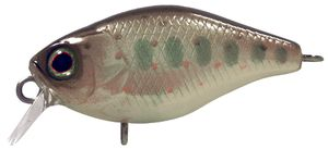 Lures Illex CHUBBY 3.8CM TRUITELLE