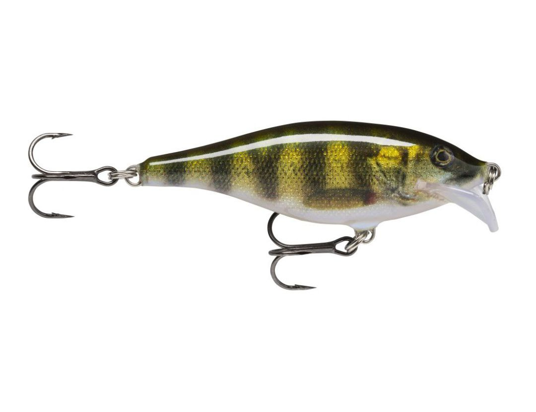 SCATTER RAP SHAD SCRS07 LIVE PERCH