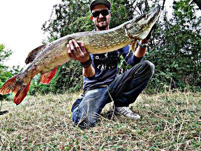 CarnaFiF Fishing