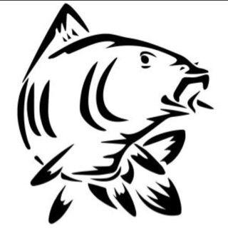 elian_carp_fishing