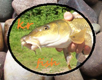 Kr Fish