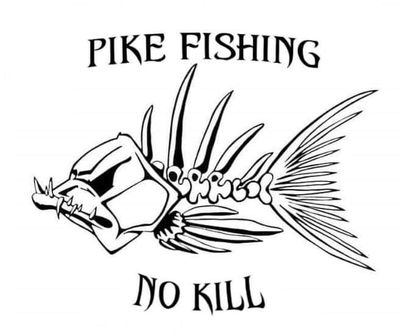 Pike Fishing