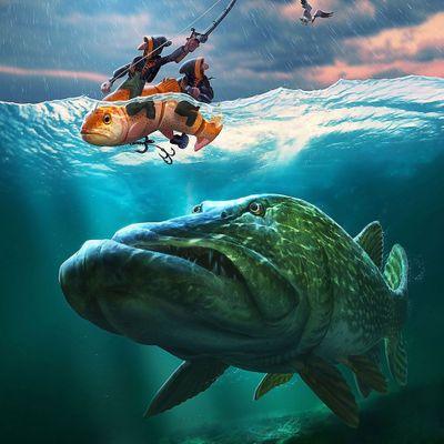 . Fisher&Wild