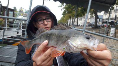 Donatien Fishing
