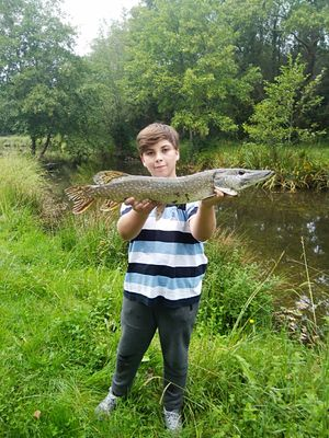 raf_ fishing